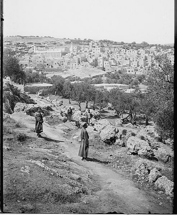Road to Hebron from the South (Library of Congress)
