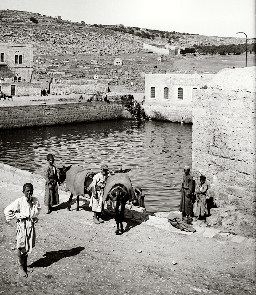 The American Colony and Eric Matson Collection (LIFE IN THE HOLY LAND.COM)